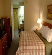 best western plus university park inn and suites