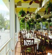 green turtle club resort and marina