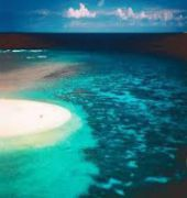 wilson island resort