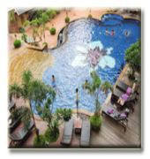 mike orchid resort