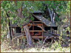 little kwara camp (t)
