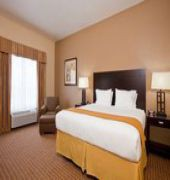 holiday inn express hotel and suites houston-alvin