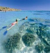 ningalooo reef resort