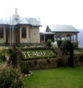 tea bush hotel